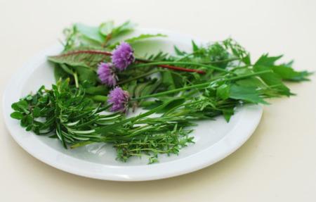 Truco saludable: reemplazar sal por hierbas frescas o condimentos