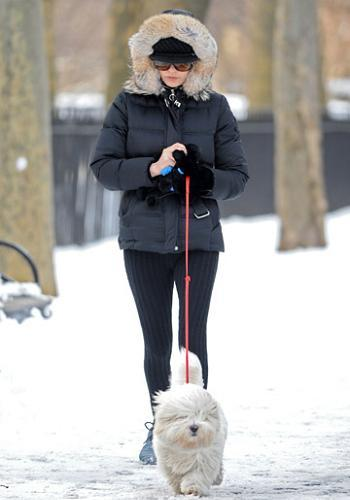 catherine zeta jones nieve