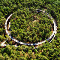 Pedalear a través de las copas de los árboles, la actividad veraniega perfecta en Limberg