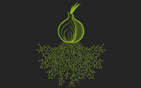 Tor lleva todo 2020 luchando contra cibercriminales que se están apoderando de la red para interceptar el tráfico de los usuarios
