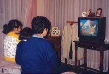 Consumo de televisión en 2005