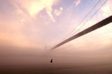 Tendiendo puentes [por Carlos Sánchez Almeida]