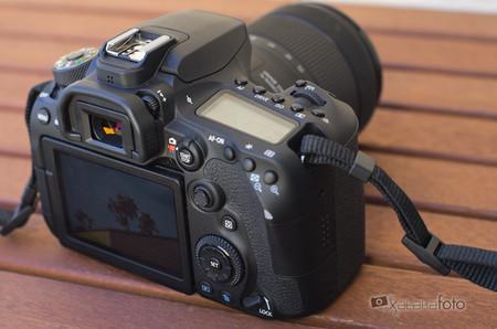 Canon Eos 90d Review 4