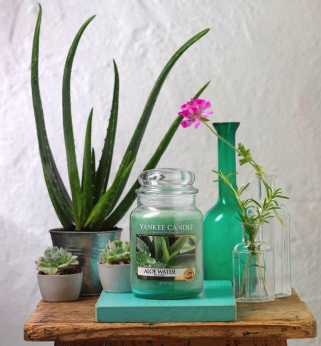 Jarra Aloe Water