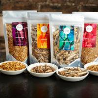 Es inevitable: este es nuestro futuro comiendo insectos