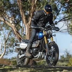Foto 49 de 91 de la galería triumph-scrambler-1200-xc-y-xe-2019 en Motorpasion Moto