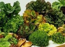 Pulpí elabora la ensalada más grande del mundo con casi 7.000 kilos de vegetales autóctonos
