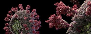 El virus SARS-CoV-2, como nunca antes lo habíamos visto: éste es el modelo 3D más detallado obtenido hasta ahora