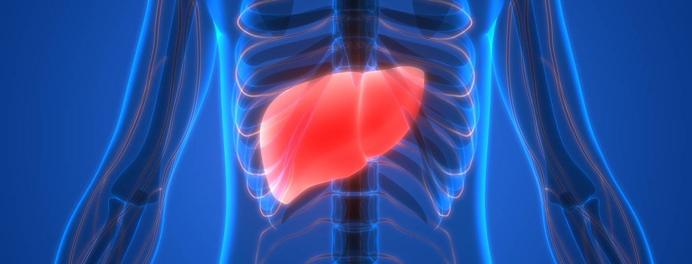 Qué es el hígado graso: causas, síntomas y tratamiento