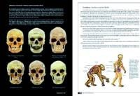 Misterioso tratado contra Darwin