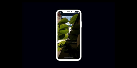 NeuralCam es la nueva app para iPhone que permite tomar fotografías con poca luz
