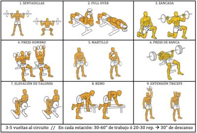Entrenamiento para la San Silvestre: circuito de fuerza con pesas