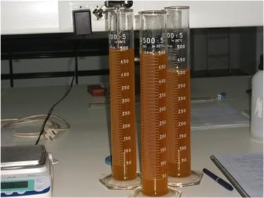 Sistema Abencor: Elabora tu propio aceite de oliva