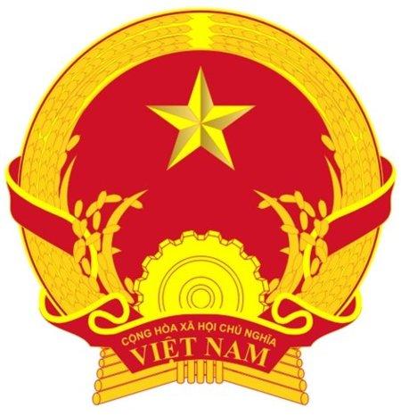 La República Socialista de Vietnam a la caza y tortura del bloguero crítico