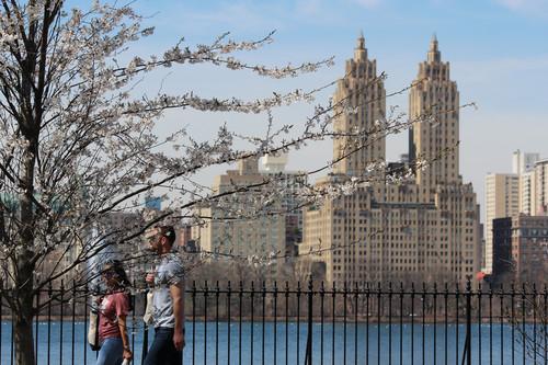 11 fotografías para enamorarte de la primavera en Nueva York