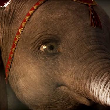 Nuevo tráiler de 'Dumbo', el remake de Tim Burton que hará que te enamores del bebé elefante volador