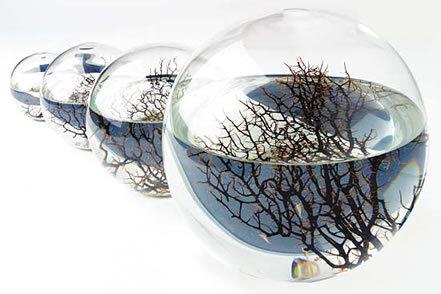 Eco Esfera