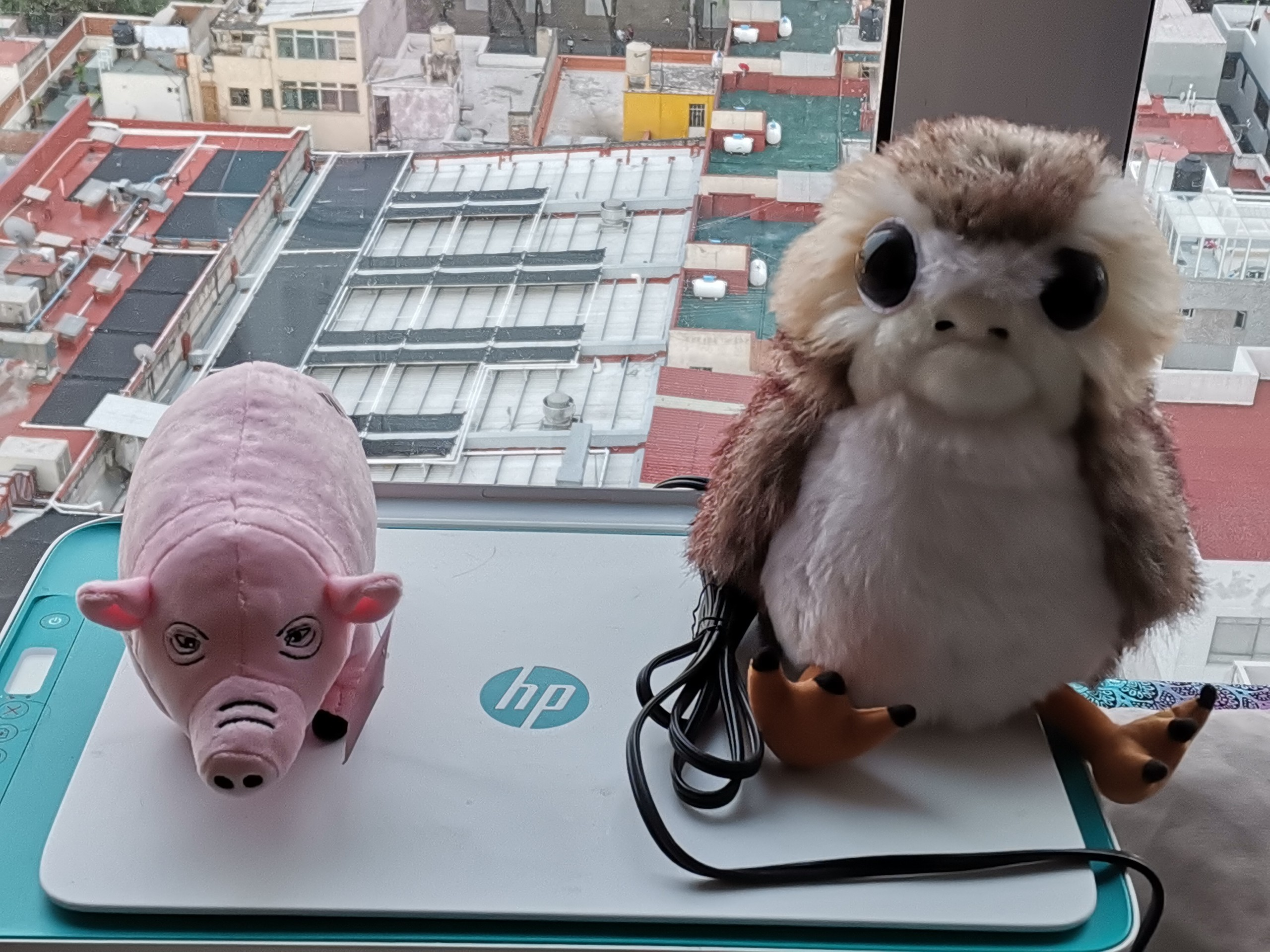 Foto de Fotos del Huawei P40 Lite (11/12)