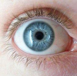 Todas las personas de ojos azules tendrían el mismo antepasado