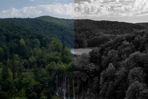 Qué es y cómo utilizar la capa de ajuste 'Blanco y negro' de Photoshop