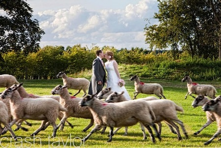 bestweddingphotography25.jpg