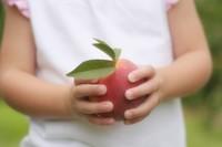 Los minerales que no deben faltar en la dieta de tu niño