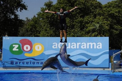 Aquarama celebra sus 25 veranos con multitud de descuentos