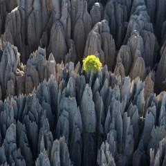 Foto 28 de 37 de la galería la-tierra-desde-el-cielo en Xataka Foto