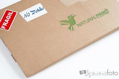 Naturalprint 06
