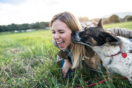 Once beneficios que tu mascota aporta a tu salud