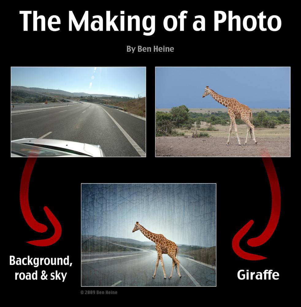 Foto de ¿Cómo Photoshop puede convertir una foto mediocre en una gran fotografía? (11/12)
