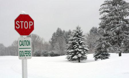 Migraciones invernales de golfistas
