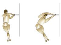 Algunos ejemplos de estiramientos en espalderas