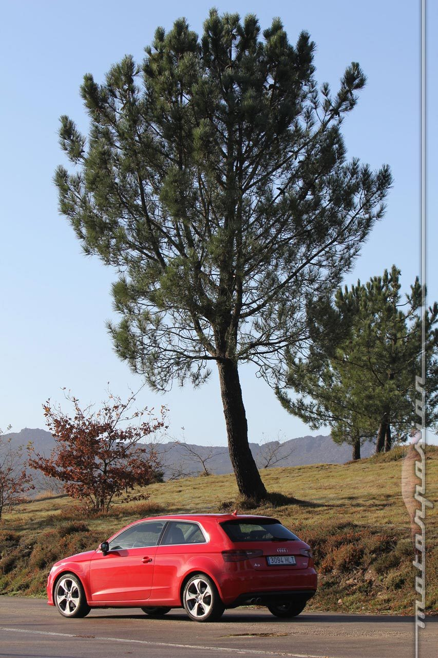 Foto de Audi A3 2.0 TDI (prueba) (18/52)