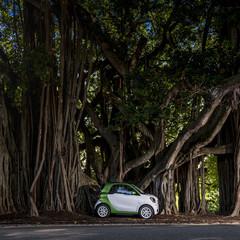 Foto 142 de 313 de la galería smart-fortwo-electric-drive-toma-de-contacto en Motorpasión