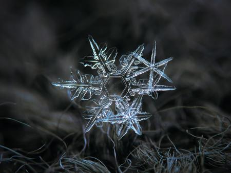 Alexey Kljatov Snowflakes 3