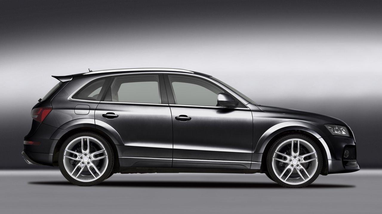 Foto de Audi Q5 Caractere (8/12)