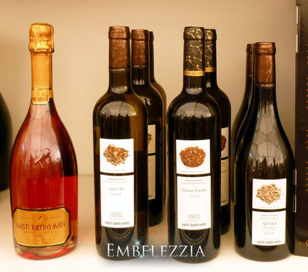 Vins-Agusti-Torello
