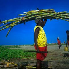 Foto 10 de 27 de la galería exposicion-color-a-la-vida-de-tino-soriano en Xataka Foto