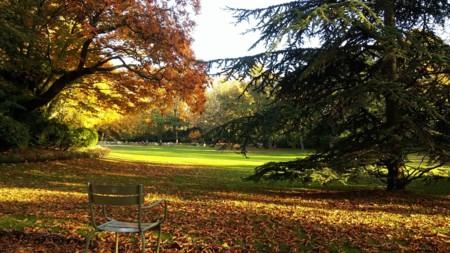 Jardin Du Luxembourg 1263702 1280