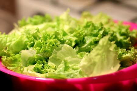 Cuales Son Verduras Temporada Puedes Disfrutar Septiembre Recetas Lechuga Vegetales
