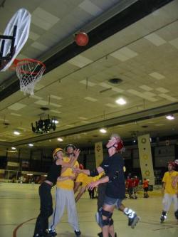 Roller Basket