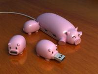 Pig Usb 2