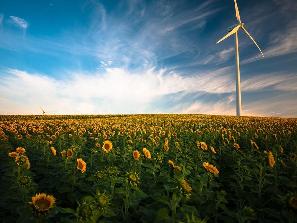 La energía solar y la eólica ya son las más baratas en casi 60 países