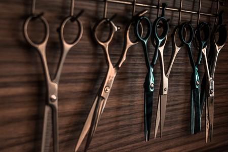 Several Scissors 1319460
