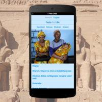 Más palos para Free Basics: Egipto suspende la iniciativa de Facebook tras dos meses de actividad