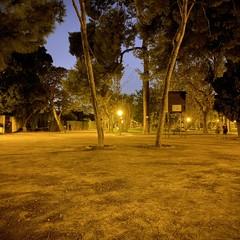 Foto 18 de 23 de la galería iphone-11-modo-noche en Xataka