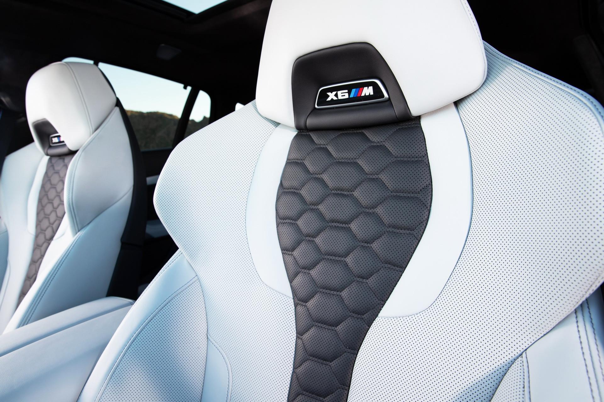 Foto de BMW X5 y X6 M Competition (29/31)