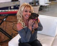 La perra de Britney Spears tiene Twitter