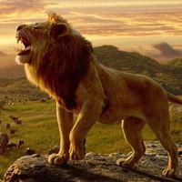 'El rey león' devora la taquilla y se convierte en el mejor estreno de un remake Disney
